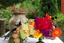 flowers and garden