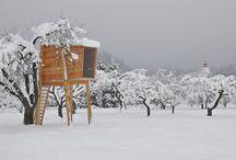 modern tree houses / by cat seto