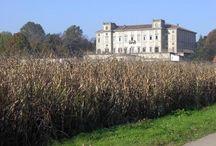 Villa Pusterla Arconati Crivelli / @LIMBIATE