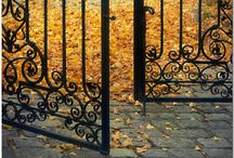 Autumn / by Juliane Carneiro