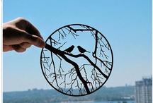 Paper cut ideas / by Jodie Buckingham