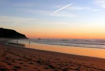 BEACH&SURF
