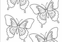motylci,kytky