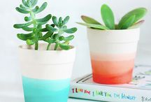 HOME  |  DIY / Things I can do to prettify my living space myself