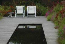 Pools + Ponds