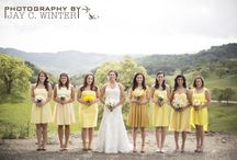 Yellow Wedding Palette