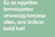 Herpesz ellen