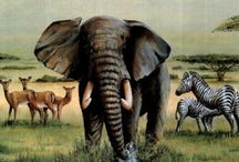 Safari, vadállatok