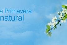 Primavera 2.0 / Algo de lo que hicieron las marcas argentinas en Facebook para el día de la primavera 2012. / by Orly
