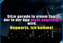 Potter & so