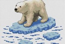 Bären, Teddy's