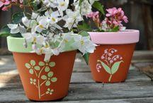 Blumentöpfe - Γλάστρες
