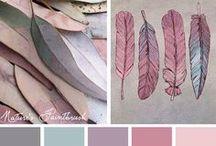 colour compination