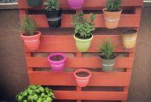 Terrazza/idee giardino