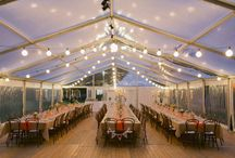 Lighting and Tents