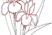 Draw Flowers