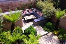 Urban Oasis Garden London / An average sized urban small London garden design transformed from a square of grass into a lush and tranquil green retreat with an array of foliage and flowers. The garden provides great views through the bifold doors of the kitchen and a secluded seating area for entertaining.