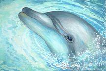 Art: Dolphins
