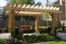 Landscaping ideas / Patio, pergolas and plants oh my!