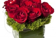 Valentine's Day Gifts / Some spectacular fresh floral designs that would make a unique and classic gift this Valentine's Day! / by Bloomster's