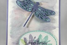 Dragonfly Dream cards