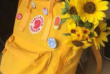 \желтый/ / yellow
