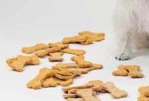 dog treats / by Madison Malenius