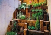 Garden / Creative Garden Ideas