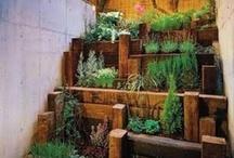 Garden / Creative Garden Ideas