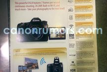 Canon EOS 70D / Photos and sample movies of this new Canon SLR