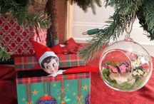 Elf on the Shelf / Christmas / by JoAn Cook