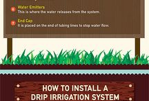 Drip Irrigation / It is trickle irrigation system that is highly recommended for soaking the soil well.