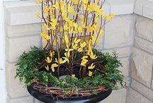 Spring Urns