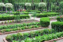 Sebze meyve bahçesi fikir