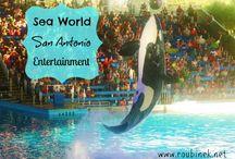 Sea World / Notas relacionadas con Sea World San Antonio Texas y Aquatica. Parte del Grupo de Bloggers #Wildside  / by mejorandomihogar.com