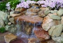 pond/water features