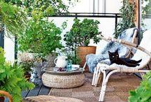 Balcony, Garden etc.