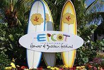 Disney Vacation - Epcot Flower & Garden Festival / by Lena Hall