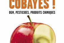Free E-book Nutrition   Recettes en pdf