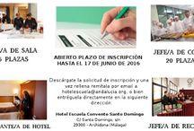 Curso 2016/2018 / El programa formativo incluye las especialidades de: Jefe/a de Sala/Maître  15 Plazas Jefe/a de Cocina           20 Plazas Jefe/a de Recepción  15 Plazas Gobernante/a de Hotel  10 Plazas