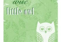 Obsessed with Owls! / by Becky Williamson