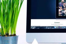 blog biz / business of blogging & inspiration