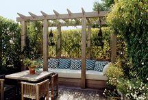 Backyard Ambition