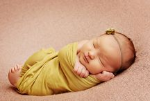 newborn and baby photography / by Brenda Acuncius