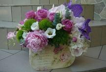 Gardenia's flowers / Wedding