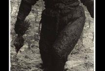 Hiroshi Hamaya * (1915-1999)