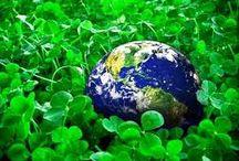 My Eco Life. / (Ecology Food - Ekologiczna Żywność) ~ Nature _ Animals.