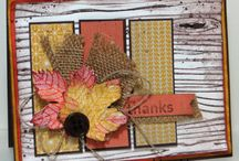 Autumn colours and cards. / My favourite time of the year for the colours...!  / by Jane Dyer