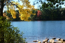 Travel. Massachusetts Scenery. / Scenic travel destinations in the great state of Massachusetts!