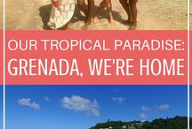Caribbean Travel / The best tips, travel itineraries and destination guides for the Caribbean!   Including informative posts from Grenada.